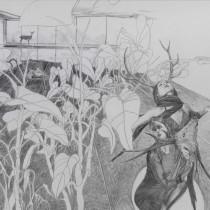 """Zeichnung """"Trophäe"""" von Uta Siebert"""
