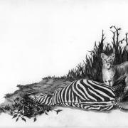 Zeichnung Beute (Peripherie)
