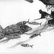 Zeichnung Schwarm (Peripherie)